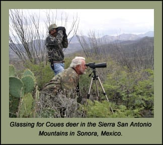 Coues Deer Adventure: The Most Boring Deer Hunting on Earth