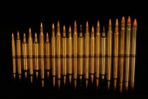 The cartridge you use for long range hunting is important.